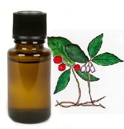 Wintergreen etherische olie 10 ml