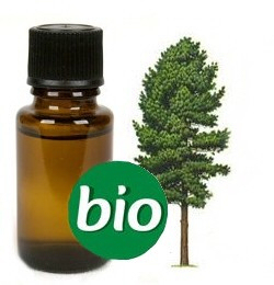 Cederhout BIO Etherische olie  10 ml
