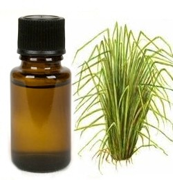 Vetiver - etherische olie - 5 ml