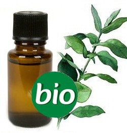 Citroeneucalyptus BIO Etherische Olie 5 ml