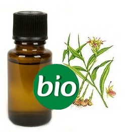 Gember BIO Etherische Olie 5 ml