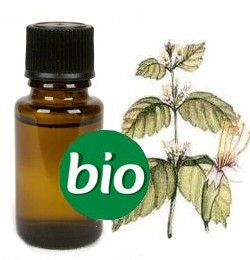 Patchouli BIO Etherische Olie 5 ml