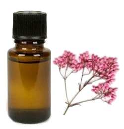 Parfumolie - Riceflower - 5 ml
