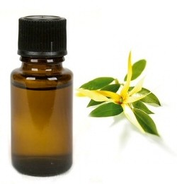 Ylang Ylang - etherische olie - 10 ml